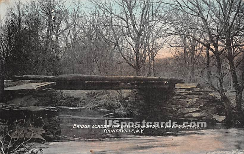 Bridge Across the Callicoon Stream on Carrs Flats - Youngsville, New York NY Postcard