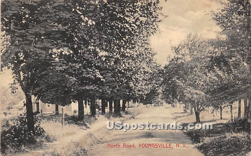 North Road - Youngsville, New York NY Postcard