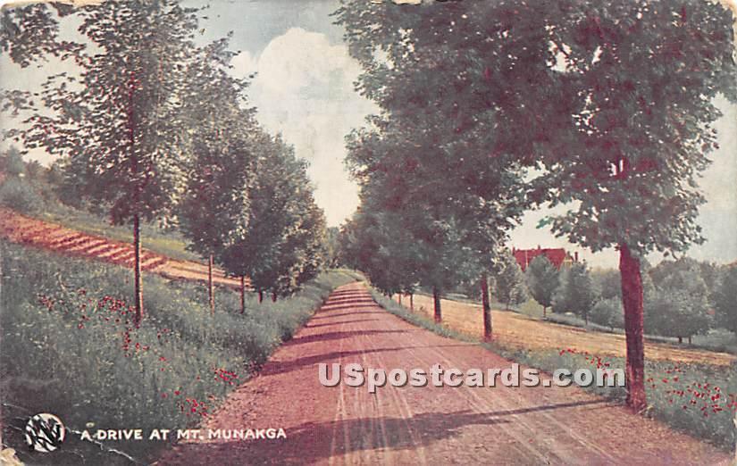 A Drive at Mt Munakga - Youngsville, New York NY Postcard