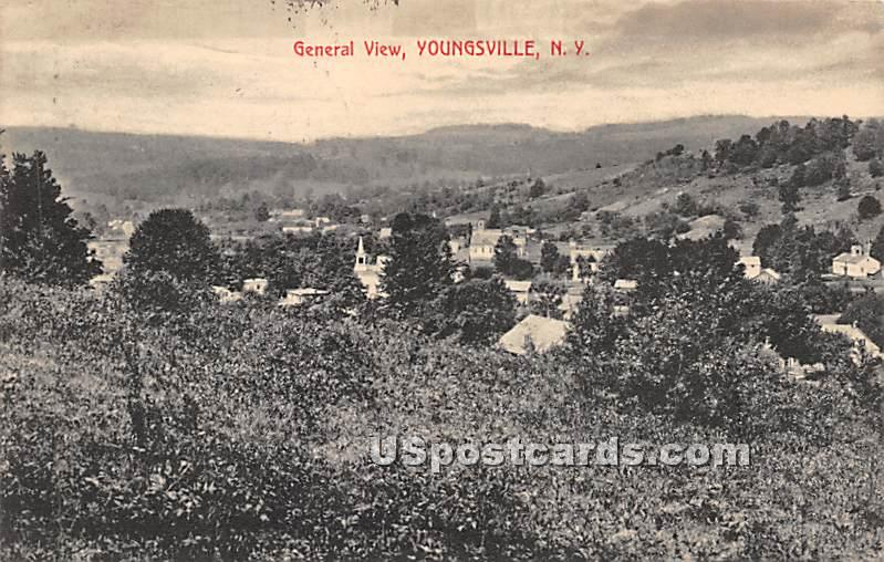 General View - Youngsville, New York NY Postcard