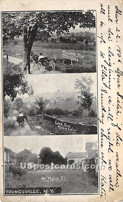On Lone Tree Mountains - Youngsville, New York NY Postcard