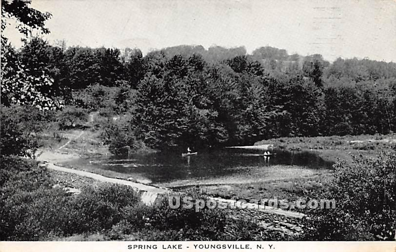 Spring Lake - Youngsville, New York NY Postcard