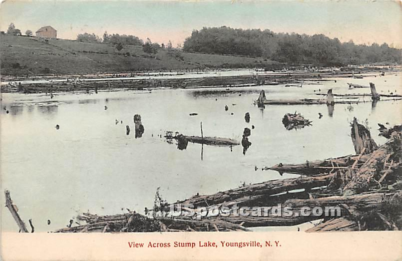 View Across Stump Lake - Youngsville, New York NY Postcard