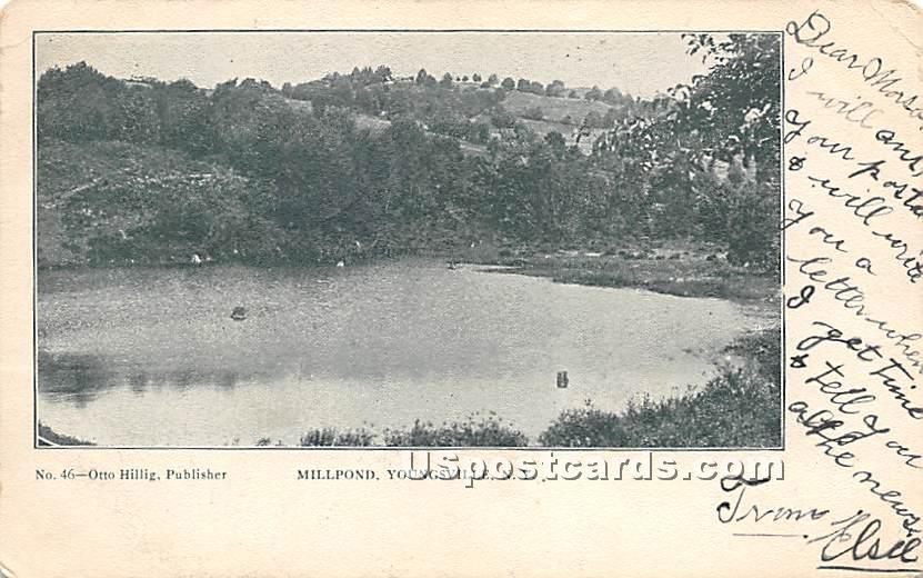 Millpond - Youngsville, New York NY Postcard