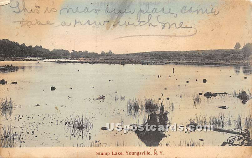 Stump Lake - Youngsville, New York NY Postcard