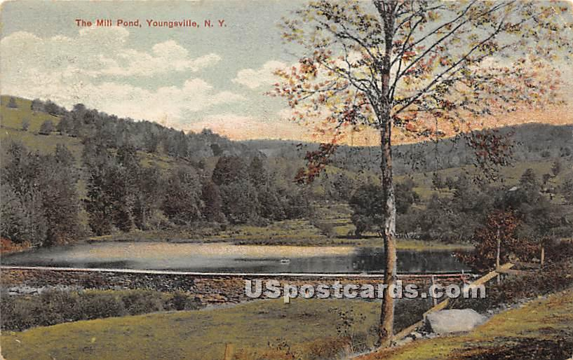 The Mill Pond - Youngsville, New York NY Postcard