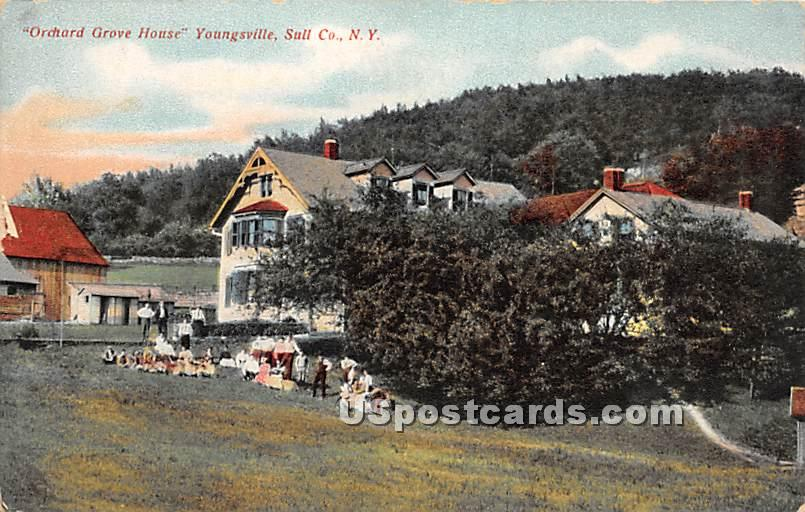 Orchard Grove House - Youngsville, New York NY Postcard