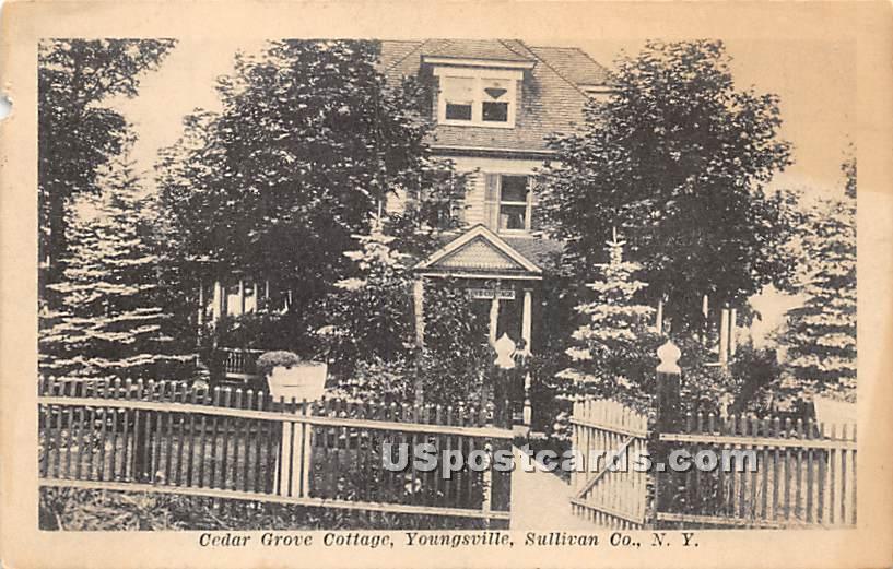 Cedar Grove Cottage - Youngsville, New York NY Postcard