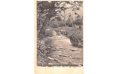 Brook Scene Youngsville, New York Postcard
