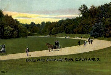 Boulevard, Brookside Park - Cleveland, Ohio OH Postcard