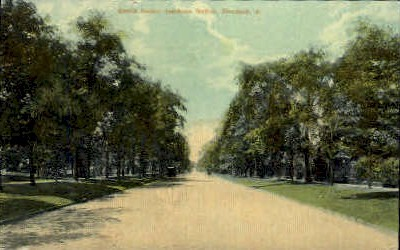 Euclid Ave. Residence Section - Cleveland, Ohio OH Postcard