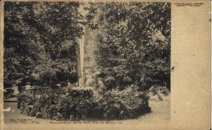Fountain and Palms in Grotto - Dayton, Ohio OH Postcard