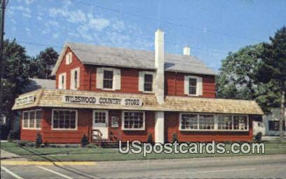 Wileswood Country Store - Huron, Ohio OH Postcard