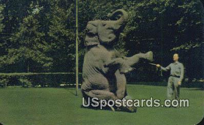 Indian Elephant, Zoological Gardens - Cleveland, Ohio OH Postcard