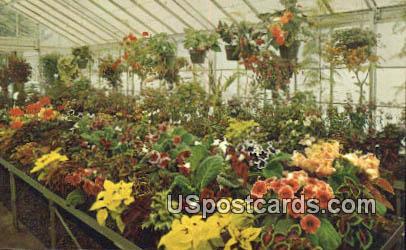 Greenhouse, Kingwood Center - Mansfield, Ohio OH Postcard