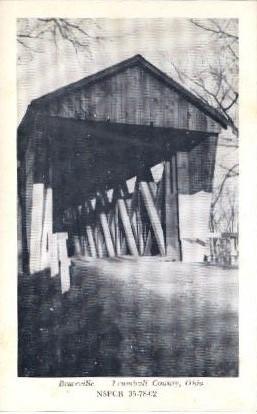 Braceville  - Trumbull County, Ohio OH Postcard