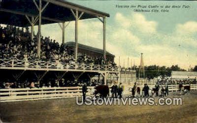 Prize Cattle At The State Fair - Oklahoma City Postcards, Oklahoma OK Postcard