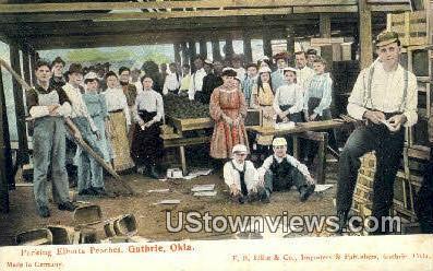 Packing Elberta Peaches - Guthrie, Oklahoma OK Postcard
