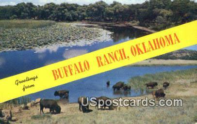 Buffalo Ranch, OK Postcard      ;      Buffalo Ranch, Oklahoma