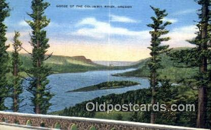 Gorge - Columbia River, Oregon OR Postcard