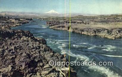 Columbia River, Oregon ;      :             Columbia River, OR Postcard