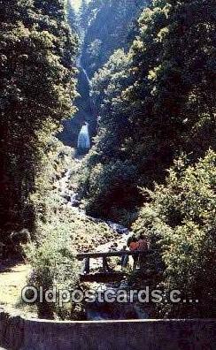 Wahkeenah Falls - Columbia River, Oregon OR Postcard
