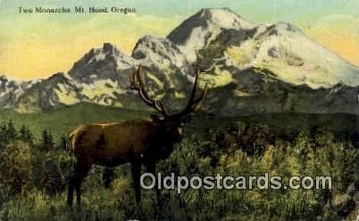 Two Monarchs - Mt Hood, Oregon OR Postcard