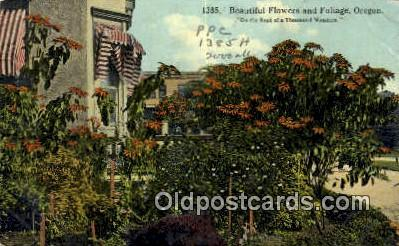 Flowers & Foliage - Misc, Oregon OR Postcard