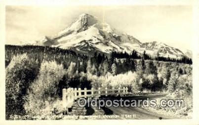 Real Photo - Mt Hood - Oregon OR Postcard