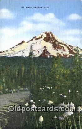 Mt Hood, Oregon ;      :             Mt Hood, OR Postcard