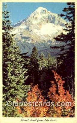 Lolo Pass - Mt Hood, Oregon OR Postcard