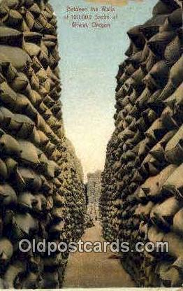 Sacks of Wheat - Misc, Oregon OR Postcard