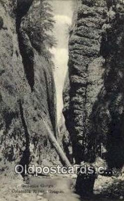 Oneonta Gorge - Columbia River, Oregon OR Postcard
