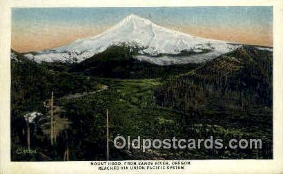 Sandy River - Mt Hood, Oregon OR Postcard