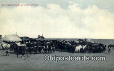 Oregon Round Up Camp - Misc Postcard