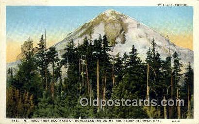Dooryard, Homestead Inn - Mt Hood, Oregon OR Postcard