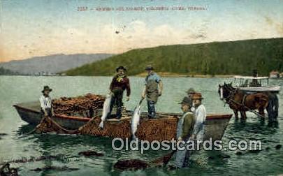 Seining for Salmon - Columbia River, Oregon OR Postcard