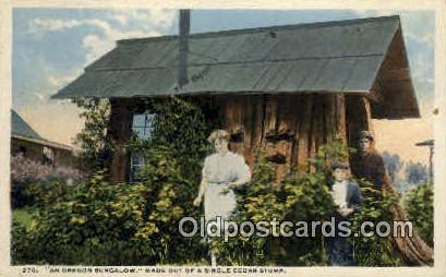 Oregon Bungalow - Misc Postcard