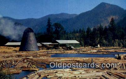 Northwest Sawmill & Log Pond - Misc, Oregon OR Postcard