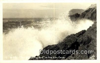 Real Photo - Sea Lion Caves - Misc, Oregon OR Postcard