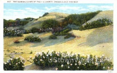 Seaward Dunes - Oregon Coast Highway Postcards, Oregon OR Postcard