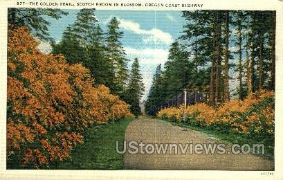 Golden Trail - Oregon Coast Highway Postcards, Oregon OR Postcard