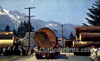 Logging - Misc, Oregon OR Postcard