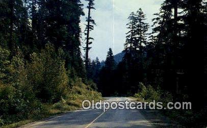 US Highway 199, Crescent City, Cave Jct - Grants Pass, Oregon OR Postcard