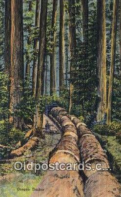Oregon Timber - Misc Postcard