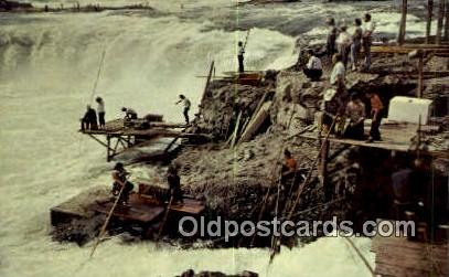 Indians Netting Fish - Columbia River, Oregon OR Postcard