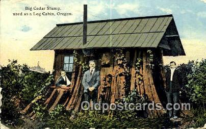 Big Cedar Stump - Misc, Oregon OR Postcard