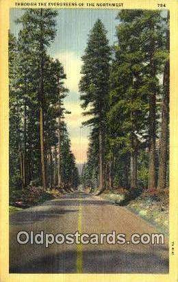 Misc, OR  ;      :      Misc, Oregon Postcard