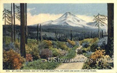 Snow Covered Peaks - Mt Hood, Oregon OR Postcard