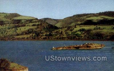 Memaloose Island - Columbia River, Oregon OR Postcard